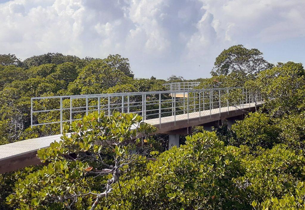 Retractable Bridge Side View Above Trees