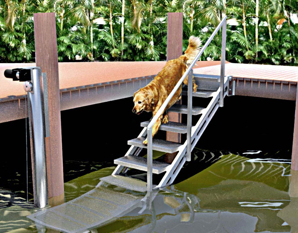 Pet Owners Use the Ascension Stair Lift For Playtime